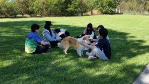 japanese-farmstay-2015-Oct-004